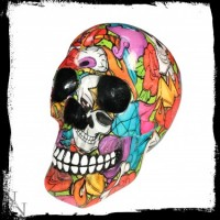 crazy colour skull