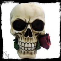 white skull with rose